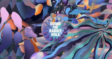 KBK Visuals at Down The Rabbit Hole